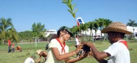 Curso Online de Gestión y Educación Ambiental